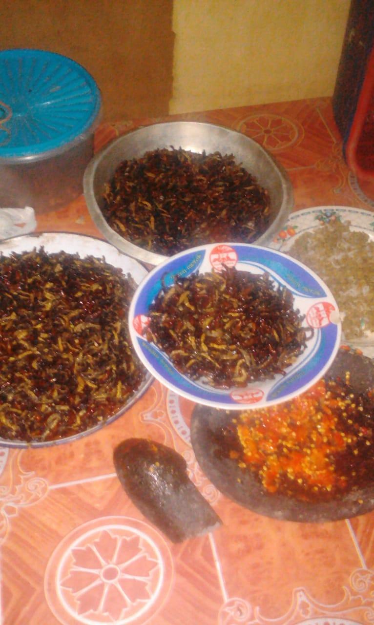 Ulat Jati Kuliner Khas Gunung Kidul